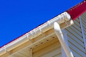 5 Major Home Inspection Red Flags